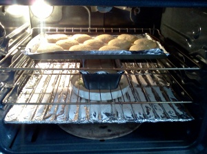 "Check out how we roll..ha, ha, hum. (cough).  Sourdough bread rolls and loaf are rising nicely in our clean oven, ""dissected "" for you in this post!"